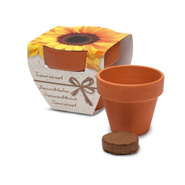 kit-de-plantation-personnalisable-pot-terre